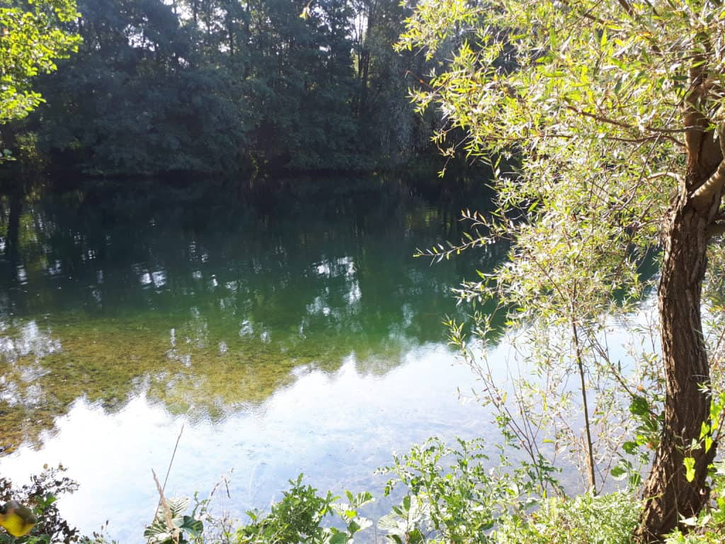 Ruhige Bucht zum Karpfenangeln